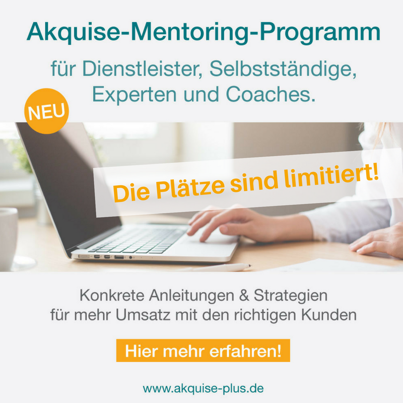 Akquise-Mentoring-Programm